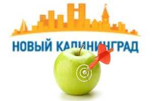 Эффективность рекламы на NewKaliningrad