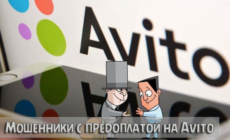 Мошенники с предоплатой на Avito